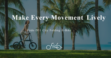 fiido electric bike