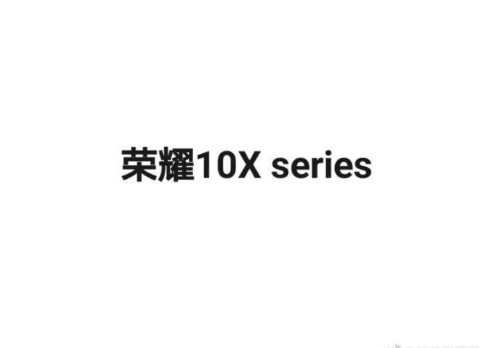 Honor 10x